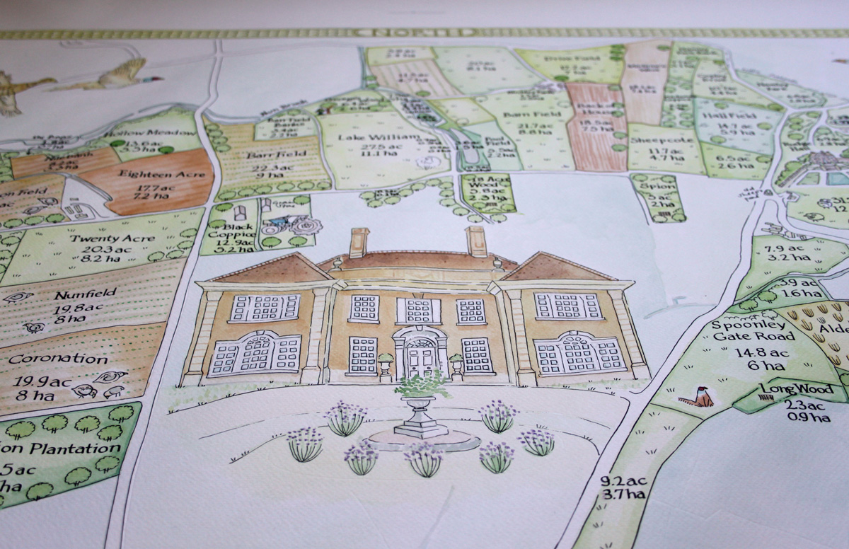 Bespoke Illustrated visitor map of Thoresby Park